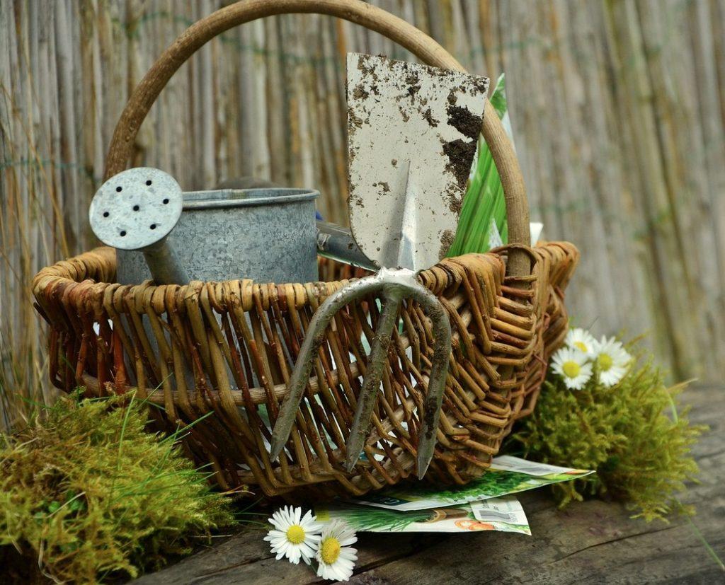 Garden tools in basket