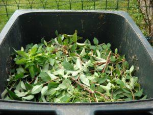 DIY compost