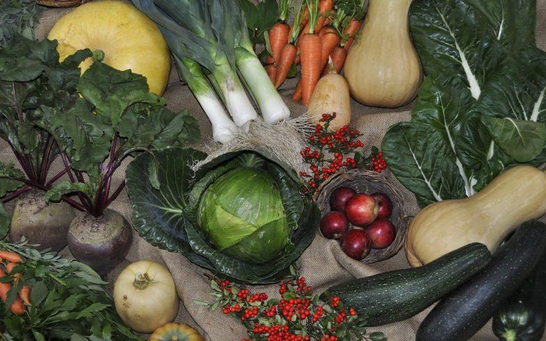 Growing Vegetables in the Backyard Garden