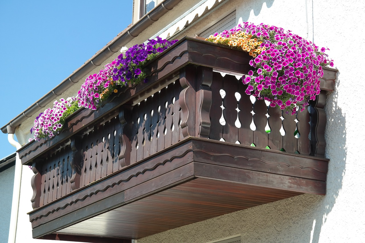 Pink and Purple Petunias in window baskets overflowing onto the balcony