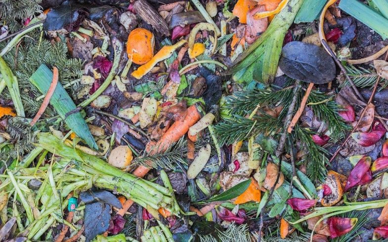 What Are The Benefits of Composting At Home?