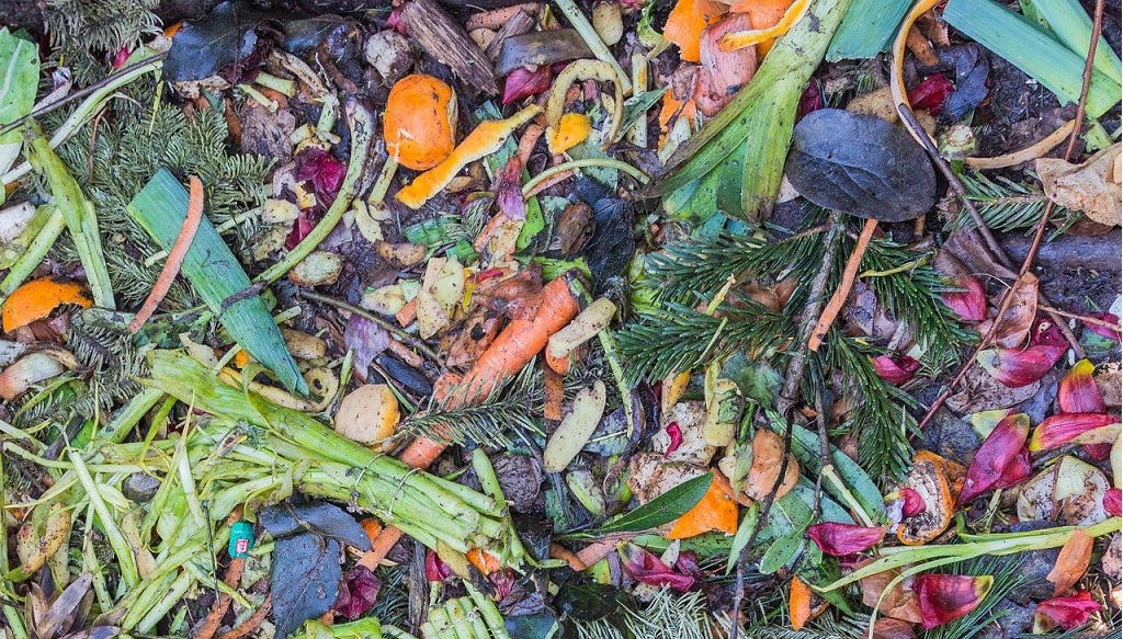 vegetables and garden waste in a compost pile