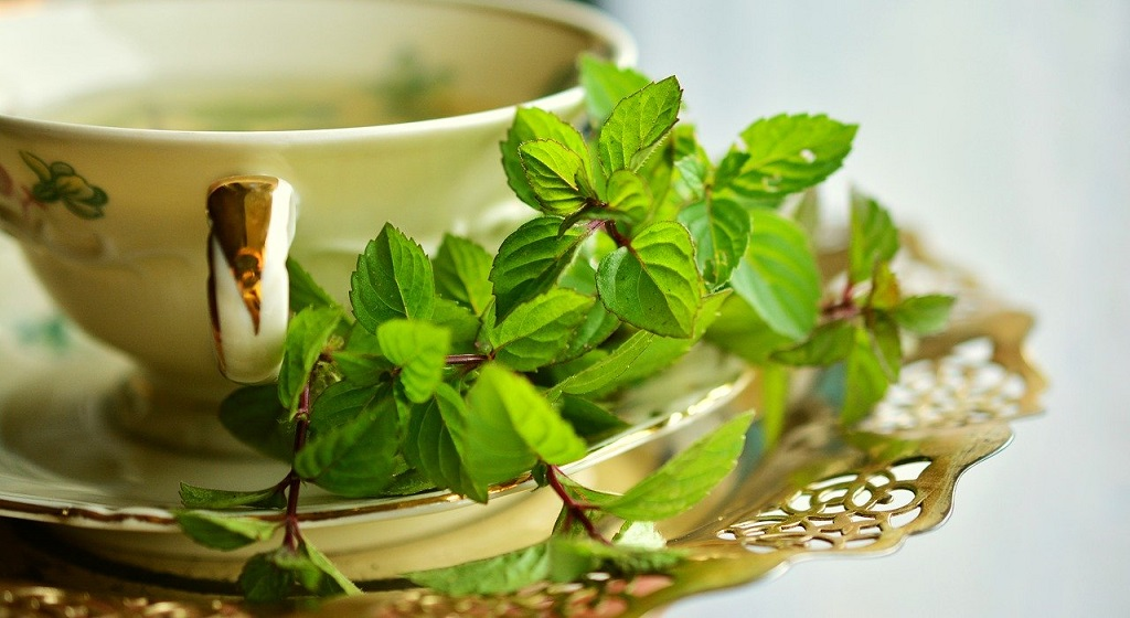 fresh peppermint next to a cup of tea
