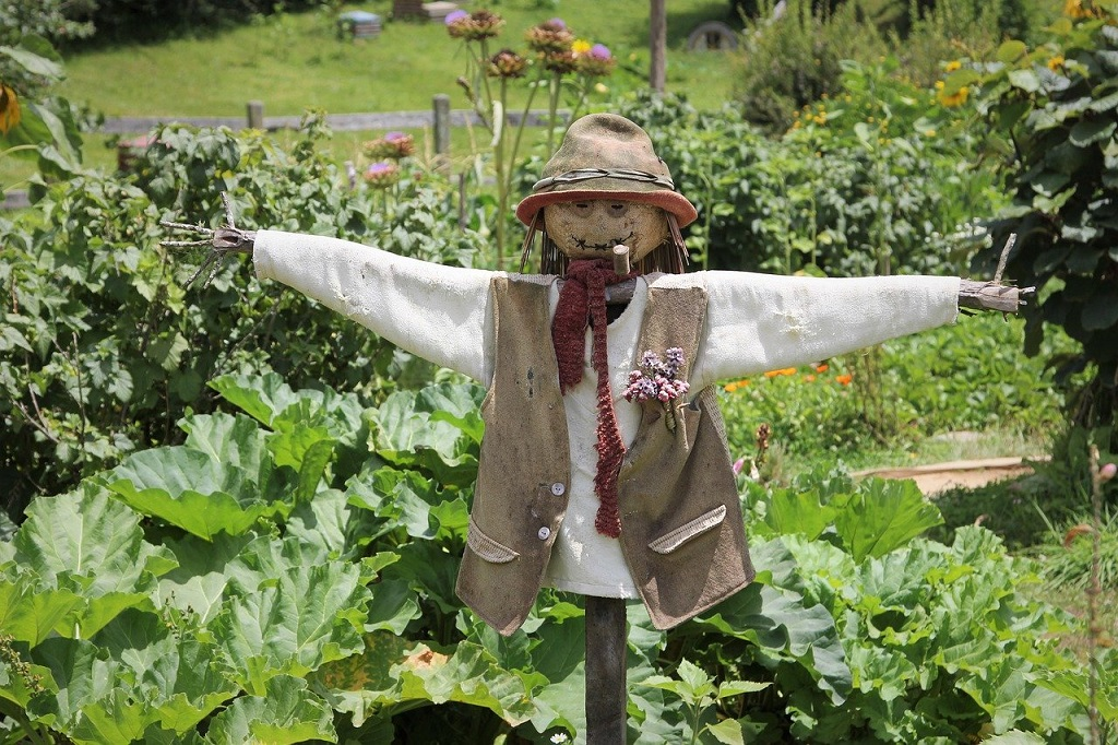 scarecrow in the garden warding off birds and other pests
